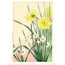 Nishimura Hodo: Daffodils - Japanese Art Open Database