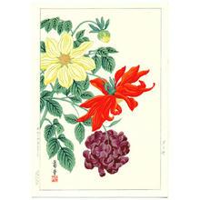 Nishimura Hodo: Dahlias - Japanese Art Open Database
