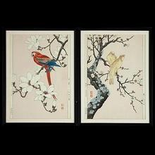 Nishimura Hodo: Parrot on a branch of magnolia- V2 - Japanese Art Open Database