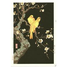 Nishimura Hodo: Plum Blossoms and Canaries - Japanese Art Open Database