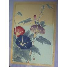 Nishimura Hodo: Unknown, morning-glory flowers - Japanese Art Open Database