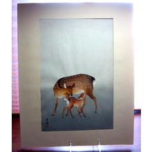 向陽: Deer and Fawn — 親子の鹿 - Japanese Art Open Database