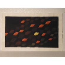 Onishi Yasuko: Light's Domain 26 - Japanese Art Open Database