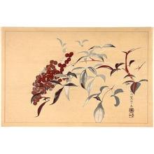 Rakusan Tsuchiya: Berries - Japanese Art Open Database