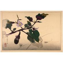 Rakusan Tsuchiya: Crickets and Flowers - Japanese Art Open Database