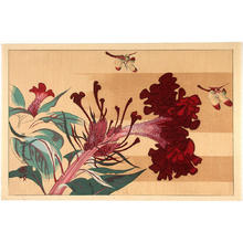 Rakusan Tsuchiya: Dragonflies and flowers - Japanese Art Open Database