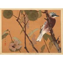 Rakusan Tsuchiya: Early Autumn - Japanese Art Open Database