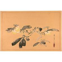 Rakusan Tsuchiya: Flower on branch - Japanese Art Open Database