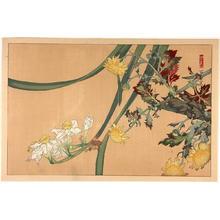 Rakusan Tsuchiya: Mixed flowers - Japanese Art Open Database