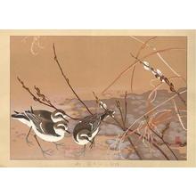 Rakusan Tsuchiya: Three Birds - Japanese Art Open Database