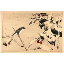 Rakusan Tsuchiya: Bird on a branch - Japanese Art Open Database