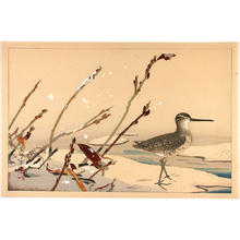 Rakusan Tsuchiya: Bird on seashore - Japanese Art Open Database