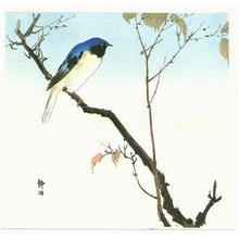 Seiko: Bluebird and Fruiting Maple - Japanese Art Open Database