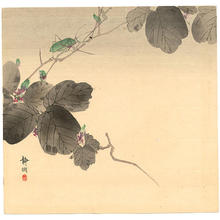 静湖: Cricket on a branch - Japanese Art Open Database