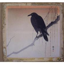 静湖: Crow on branch - Japanese Art Open Database