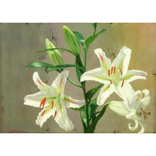 Shimizu Etsuo: Precious — 貴 - Japanese Art Open Database