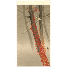 Shoson Ohara: Birds and Red Ivy - Japanese Art Open Database