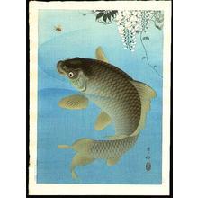 Shoson Ohara: Carp - Japanese Art Open Database