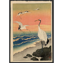 Shoson Ohara: Cranes on the seashore - Japanese Art Open Database