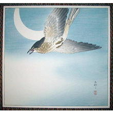 Shoson Ohara: Cuckoo In Flight - Japanese Art Open Database
