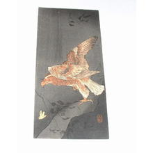 Shoson Ohara: Eagle and prey - Japanese Art Open Database