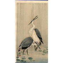 Shoson Ohara: Egrets in Rain - Japanese Art Open Database