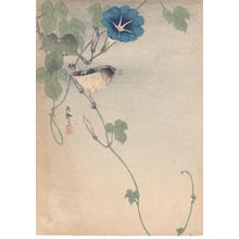 Shoson Ohara: Finch and Morning Glory - Japanese Art Open Database