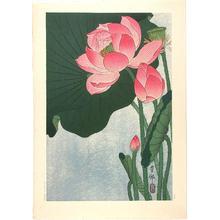 Shoson Ohara: Flowering Lotus - Japanese Art Open Database