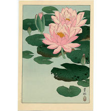 Shoson Ohara: Flowering Water Lilies - Japanese Art Open Database