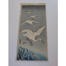 Shoson Ohara: Flying Herons in Snow - Japanese Art Open Database