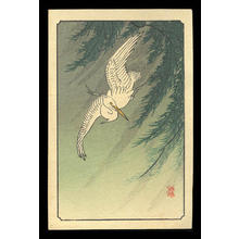 Shoson Ohara: Flying White Egret and Willow Branches - Japanese Art Open Database