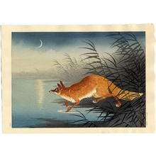 Shoson Ohara: Fox in the Reeds - Japanese Art Open Database