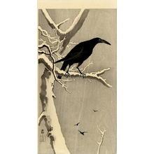 Shoson Ohara: Jungle Crow - Japanese Art Open Database