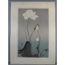 Shoson Ohara: Kingfisher and flower - Japanese Art Open Database