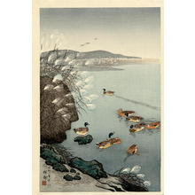 Shoson Ohara: Mallard Ducks in Coastal Scene - Japanese Art Open Database