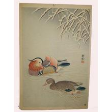Shoson Ohara: Mandarin Ducks in Snow - Japanese Art Open Database