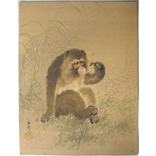 Shoson Ohara: Monkey Holding a Dragonfly - Japanese Art Open Database