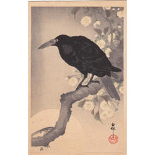 Shoson Ohara: Raven in Spring - Japanese Art Open Database