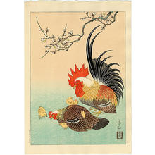 Shoson Ohara: Rooster, Hen and Chicks - Japanese Art Open Database