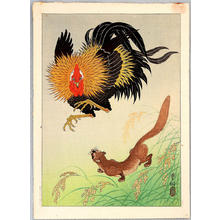 Shoson Ohara: Rooster and Weasel - Japanese Art Open Database