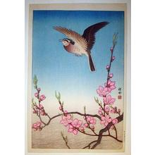 Shoson Ohara: Skylark Above Blossoming Peach - Japanese Art Open Database