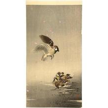 Shoson Ohara: Sparrow and chicks - Japanese Art Open Database