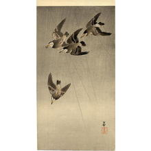 Shoson Ohara: Starlings in flight - Japanese Art Open Database