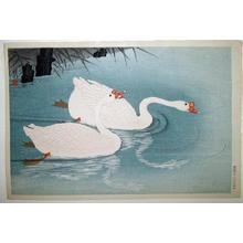 Shoson Ohara: Swans & Reeds - Japanese Art Open Database