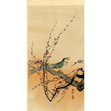 Shoson Ohara: The Songbird - Japanese Art Open Database