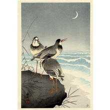 Shoson Ohara: Three Plovers - Japanese Art Open Database