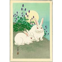 Shoson Ohara: Two Rabbits and Sun - Japanese Art Open Database