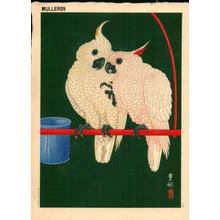 Shoson Ohara: Two White Cockatoos on Red Bar - Japanese Art Open Database