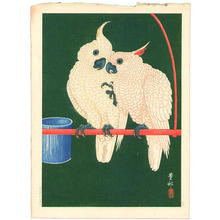 Shoson Ohara: Two White Cockatoos on Red Bar - Japanese Art Open Database