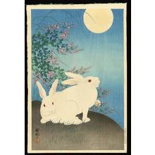 Shoson Ohara: Two rabbits - Japanese Art Open Database